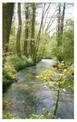 La rivière Automne